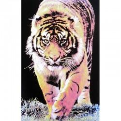 7249 - Tigre