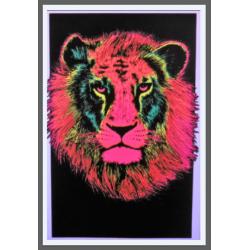 775 - Tete de Lion