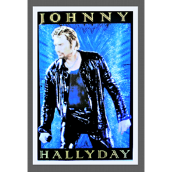 7373 - Johnny Haliday au stade