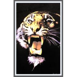 7193 - Tigre